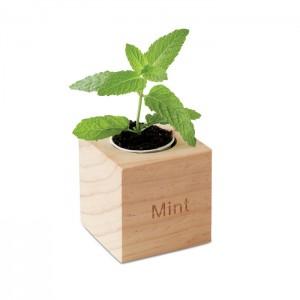 Pot en bois avec graines